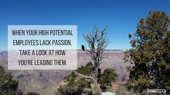 When your high potential employees start to lack passion, it's time to take a look at how you're leading them.